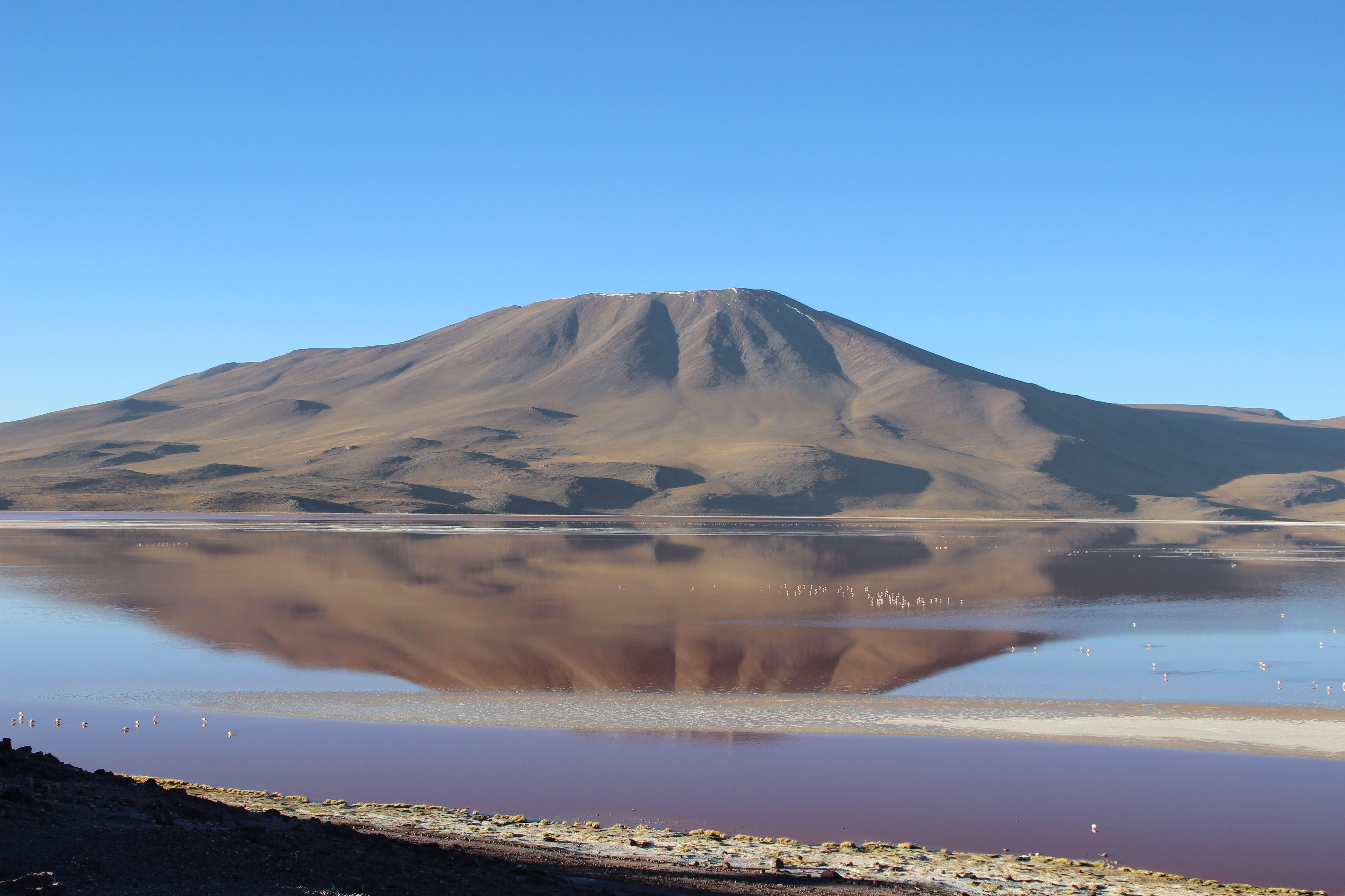 An imposing mountain reflected on the Laguna Colorada