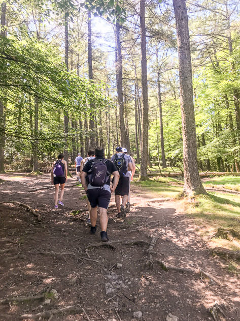 Hiking is a perfect plan for the weekend